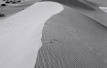 dune-sculpture