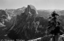 half-dome-and-tree