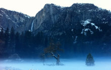 winters-mists