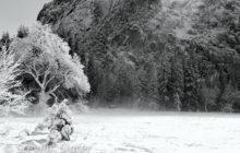 winters-rays