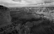 down-the-escarpment